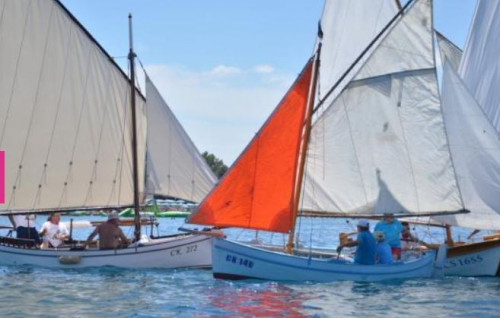 Traditional sailboat regatta